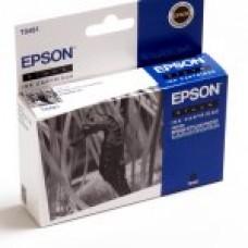 Epson C13T048140 bläckpatron svart T481